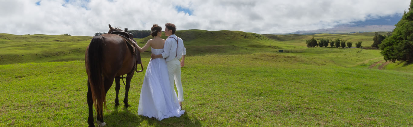 ハワイ島挙式イメージ画像